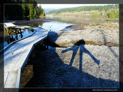 Shoreline Trail, BC, Canada (Shadows)